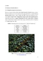 prikaz prve stranice dokumenta UTJECAJ SUMPOROVODIKA (H2S) NA VIGOR SJEMENA KRASTAVCA (Cucumis sativus L.) U UVJETIMA SOLNOG STRESA