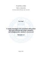 prikaz prve stranice dokumenta L'analisi etimologica dei romanismi nelle parlate dell'isola di Brazza nel campo semantico dell'abbigliamento, calzature ed accessori